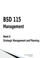 Lecture 6_Planning and strategic management_BSD115