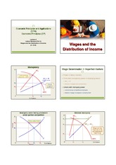 Lecture 9 Wages  Income Part 2