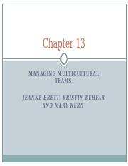 Chapter 13 - Managing Multicultural teams