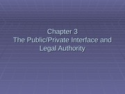 The PublicPrivate Interface and Legal Authority