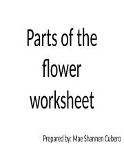 Parts of the flower worksheet.pptx