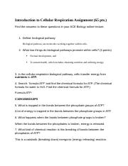 Introduction to Cellular Respiration Assignment