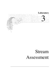 Lab 3 Stream assessment
