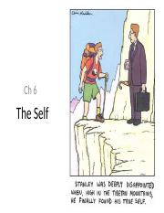 Ch 6 - Self and Identity notes.ppt