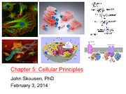 Week5_Feb3_2014_Cellular_Principles_Compressed_As_Delivered