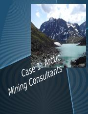 Essay about Ob, Arctic Minings Consultants, Case Study ...