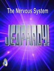 Nerv. and Endocrine System Jeopardy (1)