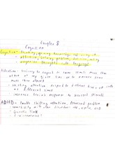 psy 155 notes on cognition