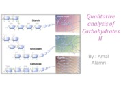 Qualitative analysis of Carbohydrates II Lab 5