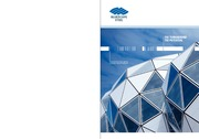 AnnualReport2010 BlueScope Steel