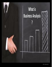 Excel What is business analysis (1)