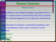 07 Hum Anat - Muscular System