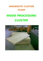 DIAGNOSTIC CLUSTER STUDY - WOOD PROCESSING_March 2012