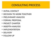 7. Consulting process