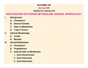 Lecture 18, Adrenal Morphology, Steroid Metab