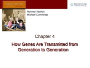 Chapter 4 — Genes Generations to Generation