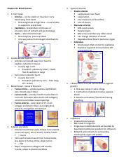 Chapter 20 Blood Vessels.pdf