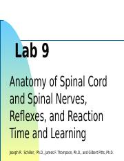 Lab_09_Spinal_Cord_&_Reflexes FC