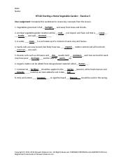 Home Vegetable Garden worksheet.doc