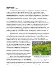 6 Eutrophication (1)
