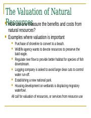 Valuation of Natural Resources with Questions.pptx
