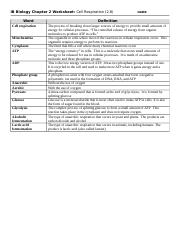 2.8 Cell Respiration Worksheet.docx