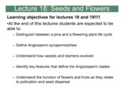18_Lecture_18_S13final