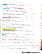 Structuralism And Functionalism Notes