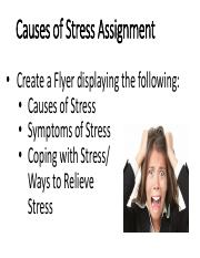 7_Causes of Stress Assignment.pdf