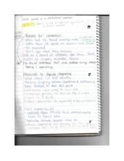 uc app essay prompt 2012