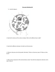 Discussion Worksheet #6