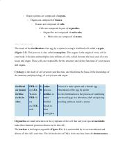 Medical Terminology Notes - Chapter 2.pdf