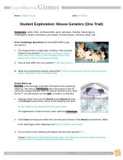 02.27.18 Mouse Genetics (Two Traits) Gizmo.docx - Name ...