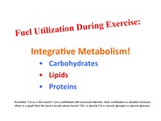 4. Integrative Metabolism Lipids