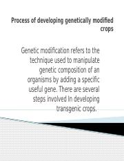 Process of developing genetically modified crops.pptx