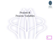 L5-Process & Process Variables