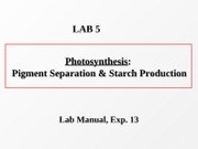 Lab-5_Photosynthesis_outline