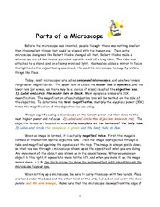 Parts of a Microscope Activity