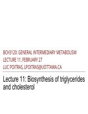 11 - Biosynthesis of TAGs and Cholesterol.pdf