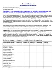Team_Peer_Evaluation_Form (1).docx