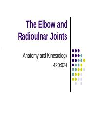 420 024 Ch6 Elbow Radioulnar Joints - notes