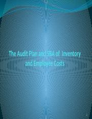 The Audit Plan and SBA of  Inventory and Employee Costs lecture 11