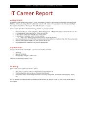 IT Career Report.docx