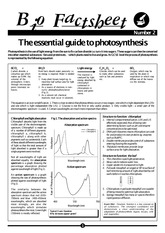 002 - The essential guide to photosynthesis