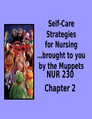 2NUR230 Self-Care Strategies