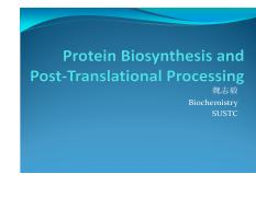 23-protein+biosynthesis+and+post-translational+processing.pdf