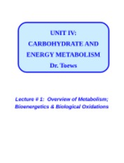 IV-1-OVERVIEW+OF+METABOLISM-2012-WEB