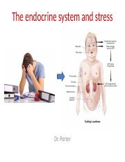 Lecture 5 The endocrine system and stress TO POST