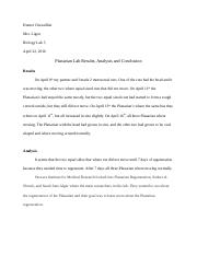Planarian Lab Results, Analysis and Conclusion.docx