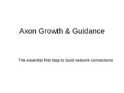 12-Axon_growth_and_guidance